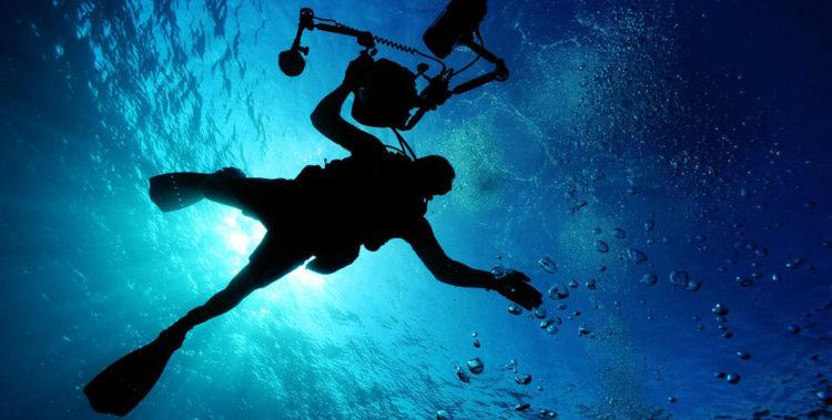 diving rangiroa